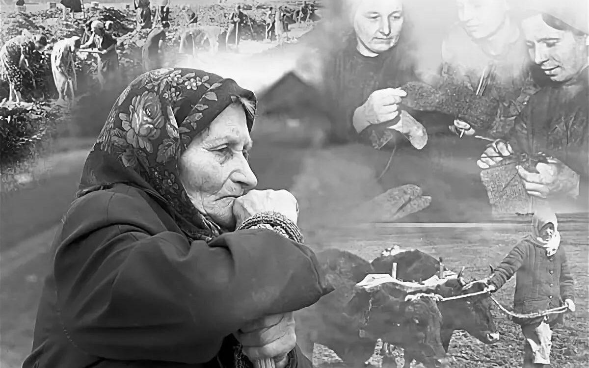 В Алтайском крае стартует патриотическая акция «Соль земли»