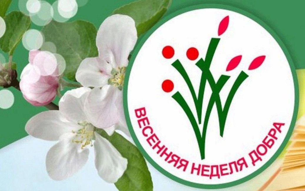 В Алтайском крае проведут Весеннюю неделю добра